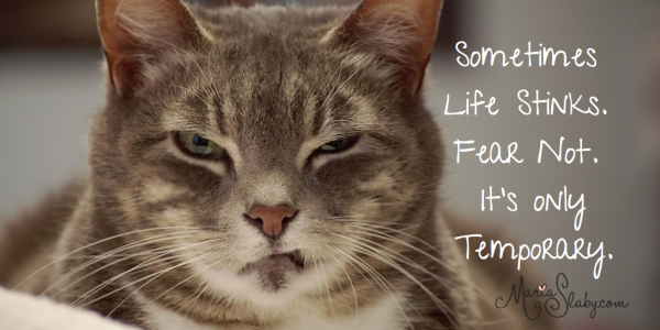 Blog_Sometimes Life Stinks